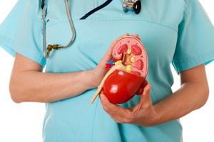 Schmerzen verursacht Nierenkrebs in den Anfangsstadien nur selten, daher erfolgt die Diagnose oft zufällig.