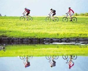 Der Radsport boomt auch am Attersee. 2,75 Millionen Haushalte in Österreich besitzen mindestens ein Bike.