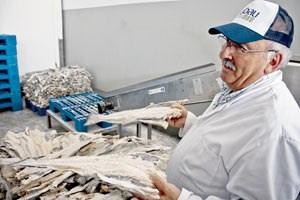 Im Zeitalter des Tiefkühlfischs salzen und trocknen ihn Produzenten wie Sergio Ribau nur noch wegen des einzigartigen Geschmacks ein.