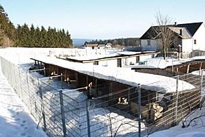 Mountain Wolf in Aigen im Mühlkreis ist die größte Schlittenhundefarm Europas.