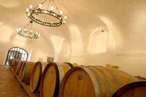 Festgeschrieben wurden weiters Vinifikationsverfahren (Stahltank, Holzfässer aller Größen), die (wie die Alkoholwerte) dort ohnehin seit Jahren üblich sind.