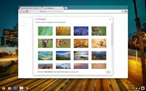Passend zum neuen Ansatz liefert Google eine Reihe von Bildschirmhintergründen.