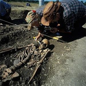 Ausgrabungen in Schweden werfen ein neues Licht auf den Beginn der Landwirtschaft in Europa.