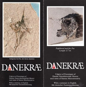 Dieses Faltblatt erläutert den Umgang mit Fossilfunden in Dänemark