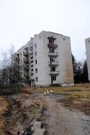 Einst war Narodichi eine blühende Stadt: Heute sind die meisten Häuser verlassen, die sowjetischen Plattenbauten modern vor sich hin und verfallen, aus kaputten Häusern wachsen Pflanzen, und die Straßen sind voller Schlaglöcher, in denen sich Wasserpfützen sammeln.