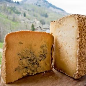 """...oder auch nicht. In beiden Varianten gilt er als """"König der Käse"""", der einst die Tafeln der europäischen Höfe schmückte."""