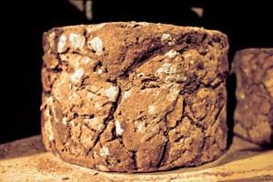 Ihre Milch ist das Ausgangsprodukt für Castelmagno, einen seit dem 13. Jahrhundert historisch belegten Käse, der bei der Reifung in unterirdischen Grotten zum Blauschimmelkäse wird - ...