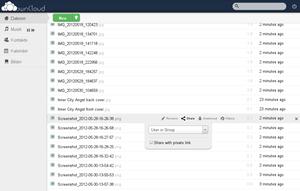 Zentraler Bestandteil von ownCloud ist der Dateimanager, der auch das gezielte Teilen von Dateien mit anderen NutzerInnen erlaubt.