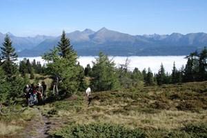 Gesamtgehzeit ca. 4½ Stunden, Höhendifferenz 600 m, kein Stützpunkt an der Strecke. ÖK25V-Blatt 3230-Ost (Stadl an der Mur), Maßstab 1:25.000; Freytag & Berndt Wanderatlas Salzburger Bergwelt,  Maßstab 1:50.000.