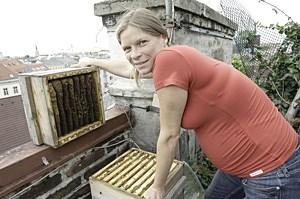 Hobbyimker wie Eva Braunrath schwärmen vom Honig aus der Wiener Innenstadt.