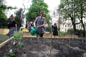 Nachbarschaftsgarten im Wiener Arenbergpark: Künftig soll es in jedem Bezirk mindestens ein solches Projekt geben. Außerdem arbeitet Rot-Grün an einer zentralen Anlaufstelle für alle Stadtgärtner.