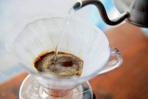 Gießkanne statt Tropfautomatik: Guter Filterkaffee entsteht nur in Handarbeit. Foto: Heribert Corn>> Hintergrund: Getropft oder gepresst