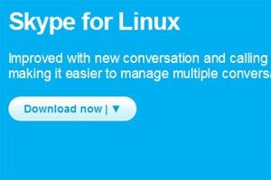 Skype 4.0 für Linux erleichtert die Verwaltung mehrerer Gespräche gleichzeitig.