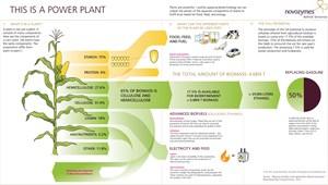2030 sollen so 50 Prozent des Treibstoffbedarfs ersetzt worden sein - sparsamere Motoren einberechnet.