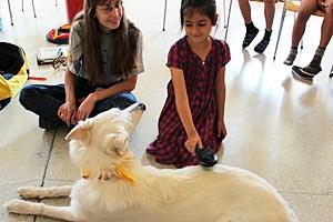 Mannsberger ist es wichtig, den Kindern zu vermitteln, dass ein Hund kein Spielzeug ist, sondern auch Arbeit macht und Geld kostet.