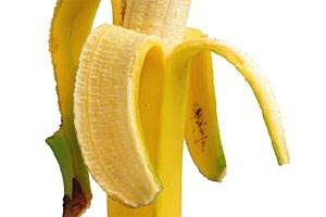 Wissenschaftler haben sich auf die Spuren der sekundären Pflanzenstoffe begeben.
