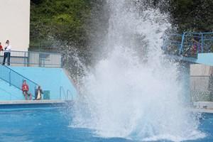 Übrigens: Am 14. Juli findet im Wiener Laaerbergbad die Show der deutschen Splashdiving-Nationalmannschaft statt. Arschbombeee!Link Splashdiving