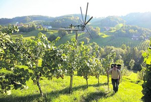 Georgiberg: Dank des Mikroklimas und der vielen verschiedenen Bodensorten wachsen hier Trauben in Weiß und Rot.Bilder vom Weingut gibt's in einer Ansichtssache.Info: Weingut Georgiberg