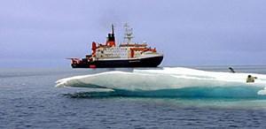 Wissenschafter des Forschungsschiffs Polarstern erzeugten im Südpolarmeer eine künstliche Algenblüte. Sie konnten erstmals beobachten, wie die verschiedenen Algenarten (unten) Kohlenstoff in den Tiefen des Meeres deponierten.