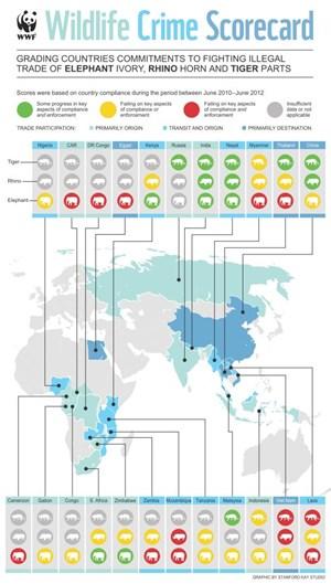 Grafik Fort- und Rückschritte beim Artenschutz ausgewählter Länder
