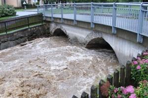 Die Pegel mehrerer Flüsse stiegen in der Nacht auf Freitag in Niederösterreich bedrohlich an.