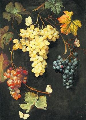 """""""Weintrauben und Schmetterlinge"""" im Vanitas-Gemälde von Philipp Ferdinand de Hamilton (um 1667)."""