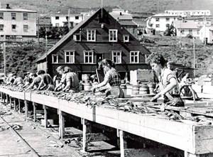 Hier hatten jene Frauen gelebt, die bei jedem Wetter Fische ausgenommen hatten. Heute befindet sich hier ein Museum.Mit dem Auto: Runter vom Gas! Wer durch Island fährt, sollte sich Zeit nehmen: Auch wenn die Landstraßen endlos, gut ausgebaut und leer sind, hält man sich hier sklavisch an Tempolimits. Denn die Strafen sind hoch. Also richtig hoch. Außerdem: Eilig hat man es in Island ohnehin, generell und prinzipiell nicht.