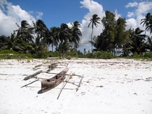 Die Traumstrände von Sansibar erlebt Peter Knauseder gemeinsam mit seiner Freundin. Was der Blogger auf seiner Weiterreise durch Afrika noch gesehen hat, zeigt diese Ansichtssache.