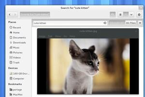 Der aktuelle Entwicklungsstand des Dateimanagers von GNOME 3.6. Und auf besonderen Wunsch der LeserInnen: Ein Kätzchen.