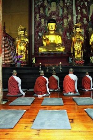 Knien, Stehen und Lotossitz: Das Morgengebet um drei Uhr bringt ungeübte Möchtegern-Buddhisten ins Schwitzen.