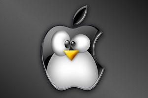 Gefangen im Apfel? Während Mac OS X über die Jahre zumindest ein langsames Wachstum erlebt hat, stagniert der Linux-Desktop weitgehend.