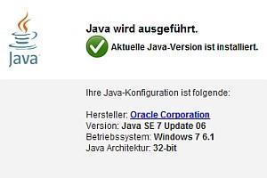 Zeigt die Prüf-Website an, dass Java ausgeführt wird, sollte das Plugin schleunigst deaktiviert werden.