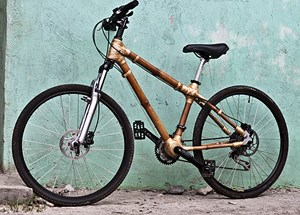 Ein fertiges Bambus-Bike.