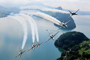 Flügelspitze an Flügelspitze: Die Albatrosse beim Luftballett.