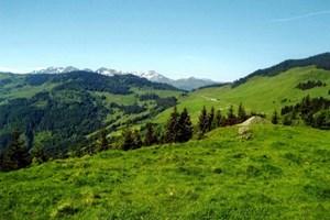 Blick vom Markbachjoch in Richtung Holzalm.
