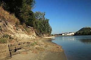 Gewollt wilde Donauufer jenseits von Hainburg: In den Abrisskanten der alten Steinbefestigung nisten nun Eisvögel.