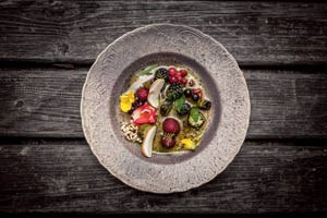 René Redzepi ließ eine Suppe aus fermentierten Pilzen mit allerhand wilden Beeren, gegrillter Gurke samt Blüten und Sonnenblumenkernen servieren.