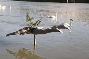 Kulturhauptstadt: steirische Kunst im Fluss.