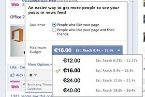 Seit einigen Monaten bietet Facebook Promoted Posts.