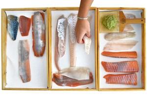 Serudas Fischbox samt frischem Wasabi auf der Haifischhautraspel.
