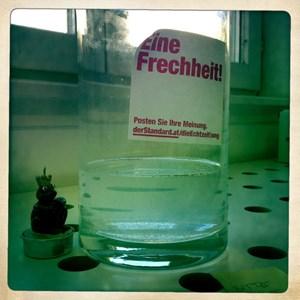 Freitag (19. Oktober): Noch immer tut sich nichts tut sich in der Vase. Salz soll jetzt animierende Wirkung auf die Urkrebseier haben.