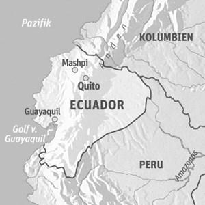 Anreise & UnterkunftIberia oder American Airlines fliegen von Wien mit Zwischenstopp(s) nach Quito. Die Preise in der Economy- Class beginnen bei 1200 Euro.Die Mashpi Lodge liegt etwa vier Stunden westlich von Quito. Drei Tage (zwei Übernachtungen) im DZ ab 1000 Euro pro Person. Der Preis umfasst den Transfer von Quito, alle Mahlzeiten, geführte Touren, Vorträge, weitere Extras wie Regenponchos und Gummistiefel. Ein Aufenthalt in Mashpi lässt sich gut mit einem Besuch in Quito verbinden.Ecuador-Info: www.ecuador.travel