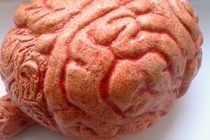 Indem das Gehirn in einem willentlichen Prozess veraltete, irrelevante Informationen ausblendet und durch neue ersetzt, kann es Kapazitäten freistellen und dadurch seine Leistungsfähigkeit optimieren.