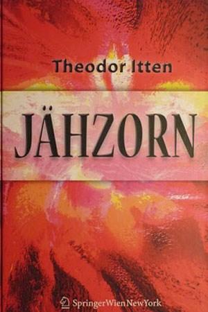 """Theodor Itten: """"Jähzorn - Psychotherapeutische Antworten auf ein unberechenbares Gefühl"""", Springer-Verlag Wien, 193 Seiten, 24,95 Euro"""