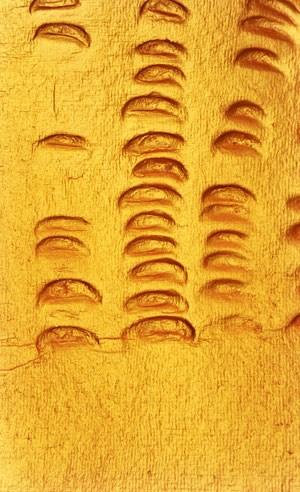 """Detail aus einem Prägedruck von Hans Bischoffshausen in der Ausstellung """" Monochromie und Reduktion II"""""""