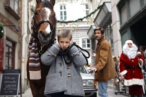 """Mika (Enzo Gaier) und sein vierbeiniger Freund in """"Das Pferd auf dem Balkon""""."""