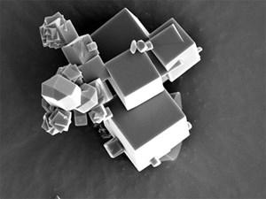 Die Kristalle der metallorganischen Verbindung unter dem Rasterelektronenmikroskop in mehr als 6000-facher Vergrößerung.