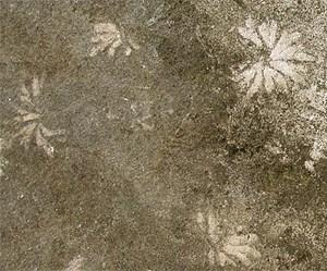 Die fossilen Spuren auf der Treppe zur Befreiungshalle in Kelheim ähneln den Fressspuren heute lebender Wattwürmer.
