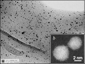 Ganz von selbst ordnen sich auf den Hüllproteinen von Sulfolobus acidocaldarius Goldatome zu magnetischen Nano-Clustern an.