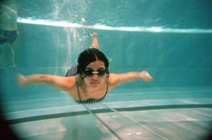 Der Wiener Gemeinderat hat am 29. März 2012 beschlossen, eine Machbarkeitsstudie über die Errichtung eines Schwimmsportzentrums zu beauftragen.